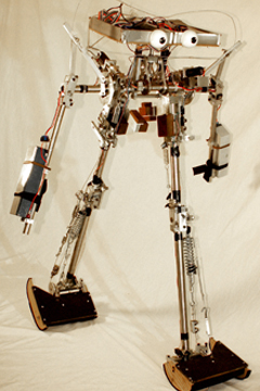 passive robot